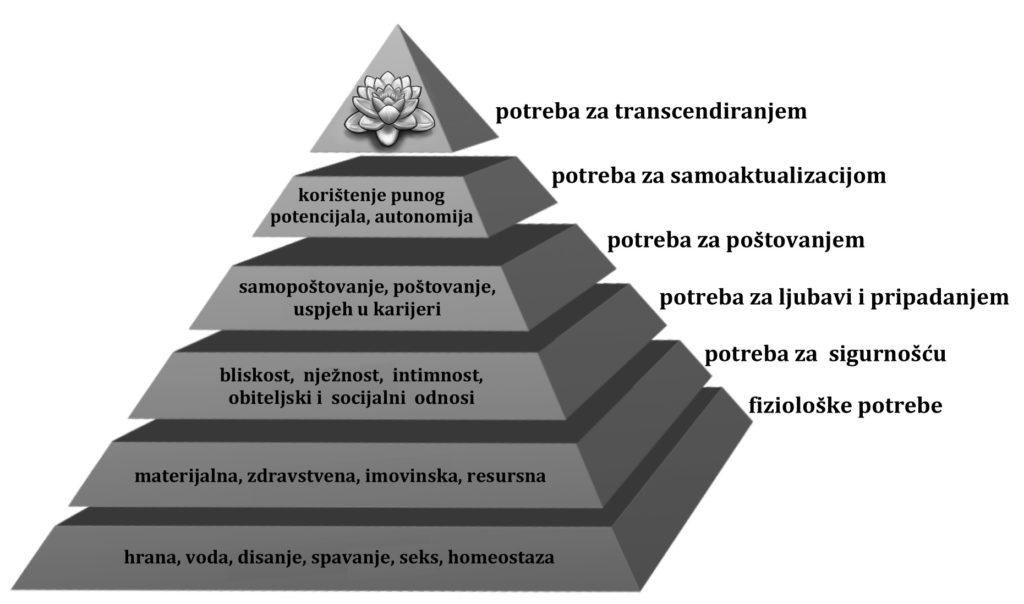 8 - maslow, str. 232