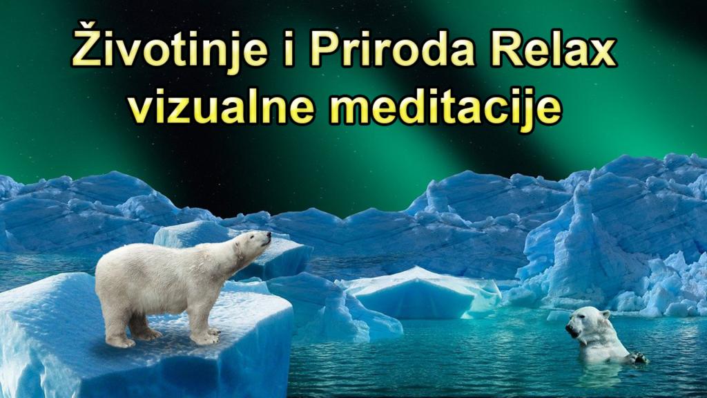 životinje i priroda relax czh